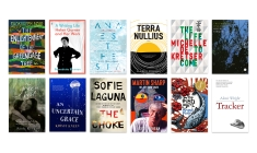 Announcing the 2018 Stella Prize Longlist