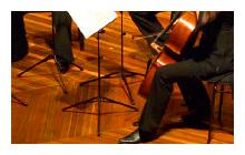 Australian Chamber Orchestra [Emerging Artists Program]