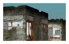 Venice Biennale 2007 [Curator's Program]